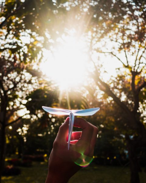 Let the Light in—Creating an Organizational Culture Around Passion and Partnership